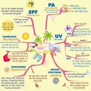 cơ chế phản ứng bảo vệ da